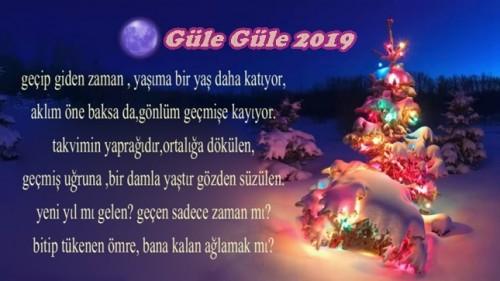 2019_yeni_yil_mesajlari_anlamli_sozler_1546243337_8367.jpg